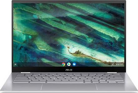 Chromebook Asus C436FA-E10011