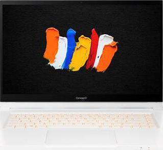 Acer ConceptD 3 Ezel Pro CC315-72P-7226 W10P