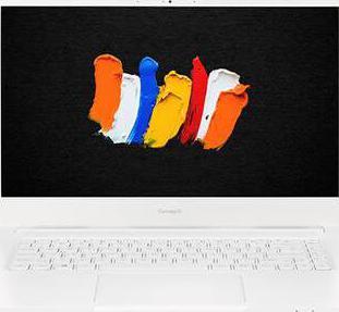 Acer ConceptD 3 CN315-72G